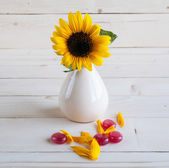 Sunflower on a wooden background with red candy — Stock Photo