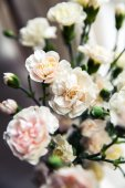 Delicate bouquet of carnations in vintage style — Stock Photo