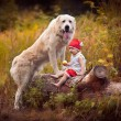 Little girl and big dog — Stock Photo #54432721