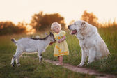 The girl with the kid and the dog — Stockfoto