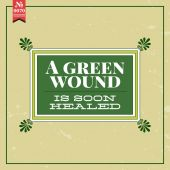 Green wound is soon healed — Stock Vector