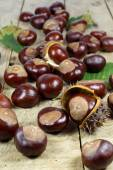 Fresh Chestnuts from an Autumn Harvest and Barbed Crust on an Old Wooden Table with Green Leaves — Zdjęcie stockowe
