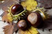 Castagne fresche con buccia aperta su un vecchio tavolo in legno rustico con foglie di autunno marrone — Foto Stock