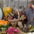 Still Life with Various Pumpkins, Wicker Basket Filled with Pinecones, Acorns, Chestnuts and Autumn Leaves on a Hay, Wooden Planks Background — Stock Photo #56788313