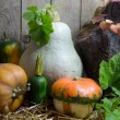 Small and Big Pumpkins with Green Leaves on a Hay in Autumn Still Life, Wooden Planks Background — Stock Photo #56791495