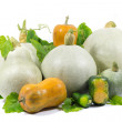 Yellow, Green, White, Small and Big Pumpkins with Green Leaves Isolated on White — Stock Photo #56990853