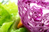 Sliced  cabbage closeup — Photo