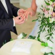 Wedding ceremony, the bride and groom exchange rings. — Stock Photo #58506265
