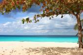 Beautiful view of the azure sea — Foto de Stock