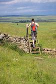 Female hiker crossing stile — Stock Photo