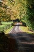 Track leading through Wallington House Gardens — Stock Photo