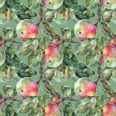 ブランチ上のリンゴ — ストック写真