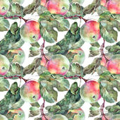 Apple sur une branche — Photo