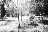 Liefhebbers in park — Stockfoto