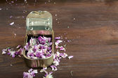 Tin can with pink flowers — Stock Photo