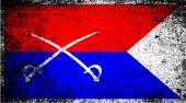 Custer HQ Flag — Stock Vector