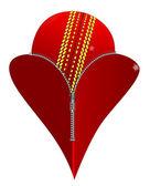 Love Cricket — Stock Vector