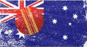 Cricket Season — Stock Vector