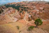 Bryce Canyon National Park, USA — Stock Photo