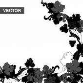 Grapevine black — Stock Vector