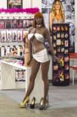 5th International Exhibition of underwear, beachwear, home wear and hosiery Lingrie Expo Moscow Aututumn September The mannequin — Stock Photo