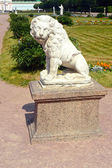 Sculpture of a lion. Homesteads graphs Sheremetevs Moscow Russia — Stock Photo