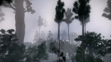 Plane crash in the jungle — Stock Video