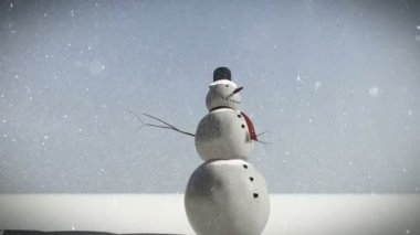 Um boneco de neve na neve — Vídeo stock
