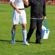 Постер, плакат: Medic helps to the injured soccer player