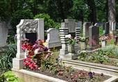 Pierres tombales dans le cimetière public — Photo