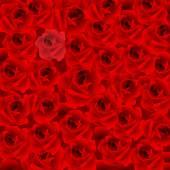 Fond de roses rouges — Vecteur