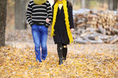 The guy and the girl walk in the autumn park — Stock Photo