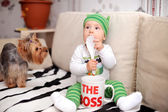 Kid boss and doggie — Stock Photo