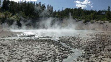 Mud Caldron hot spring — Stock Video