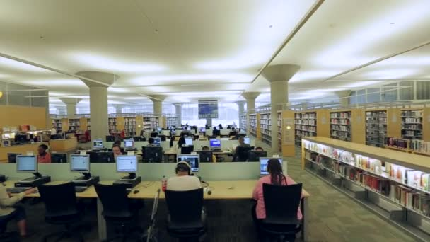 Patrons work on computers in library — Vidéo