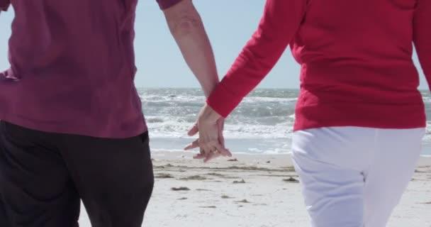 Romantic senior couple at ocean — Vidéo