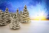 Winter landscape - shot 4 — Stock Photo