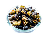 Fava bean, roasted and salty background — Stock Photo