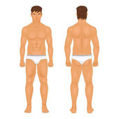 Figure of the standing man in front and behind vector — ストックベクタ
