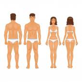 Healthy body type of man and woman in retro colors — Vetorial Stock