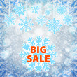 Winter sale background banner and snow. Christmas. New year. Vector — Stock Vector #59586805