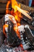 Burning Coal  in fire — Stock Photo
