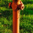 Red hydrant  in the meadow — Stock Photo #54059401