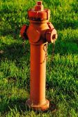 Red hydrant  in the meadow — Stock Photo