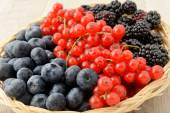 Blueberries, currants and blackberries basket — Stock Photo