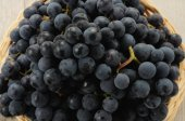 Bunches of black grapes — Stock Photo