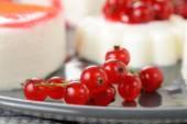 Panna cotta with cream — Stock Photo