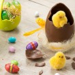 Easter chicks and chocolate eggs — Stock Photo #66076709