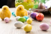 Easter chicks and chocolate eggs — Stock Photo