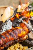 Cooking pork on spit — Stock Photo